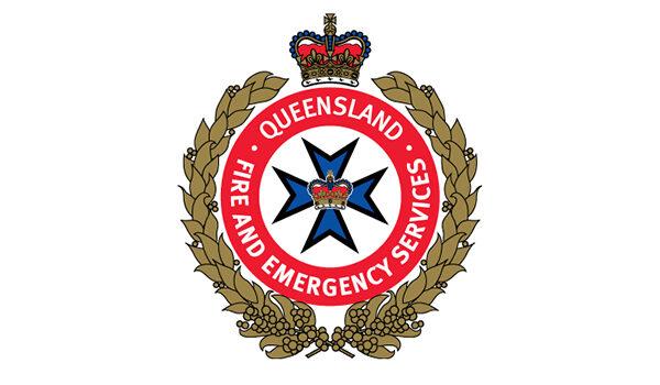 Dept Fire Emergency Services Logo