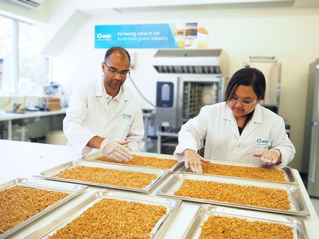 AEGIC oat processing for noodles and rice
